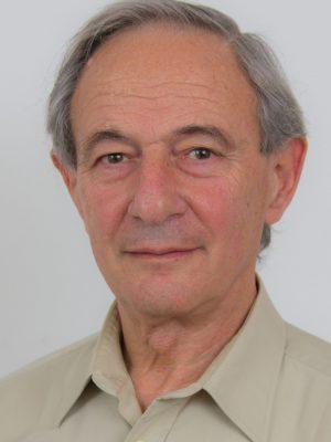צבי פיירמן